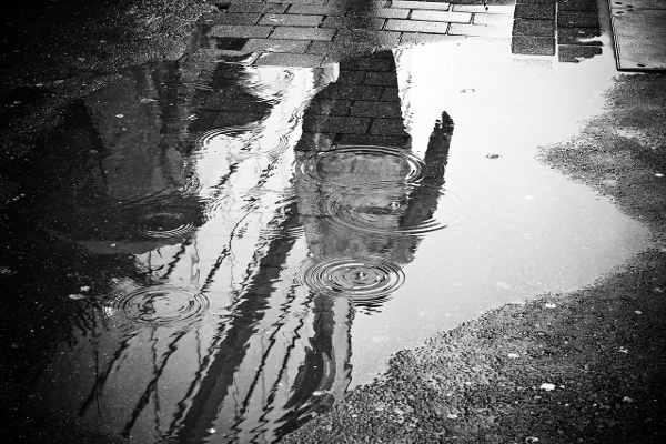 雨で濡れた地面